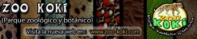 Banner ZOO KOKI