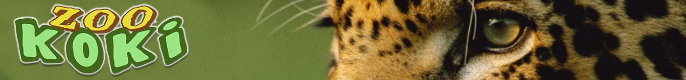 .:: ZOO KOKI::. Parque zoológico y botánico | Fundación ZOO KOKI