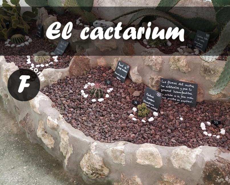 El cactarium